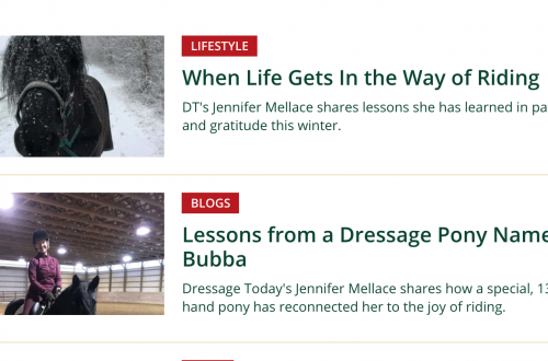 Dressage Today Blog Entries