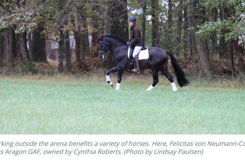Practical Horseman – Using Hills to Challenge Your Dressage Horse